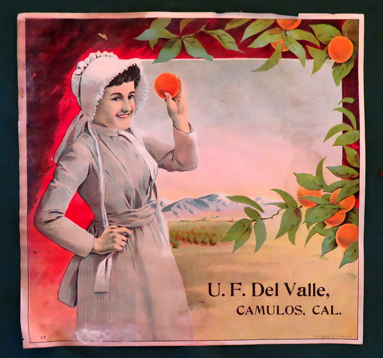 One of several citrus labels found in a trunk on the second floor of the Del Valle Winery at Rancho Camulos during the summer of 2014. The citrus labels date from the Del Valle period at Camulos. U.F. Del Valle is Ulpiano, a son of Ygnacio and Ysabel (Varela) del Valle, who  became ranch manager in 1886 when he was 21.