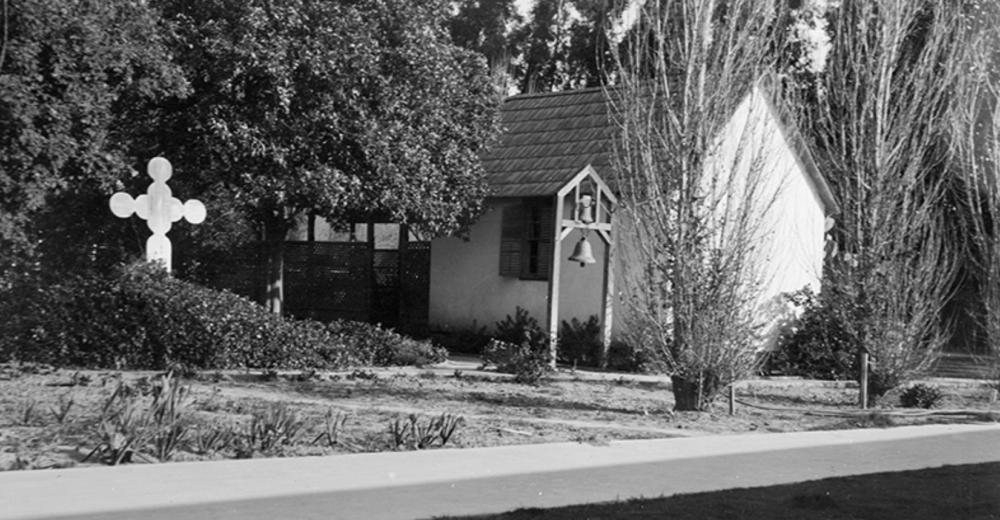 View of black walnut tree at Rancho Camulos (125 ft spread). Historic Buildings Survey, 3/22/1934.